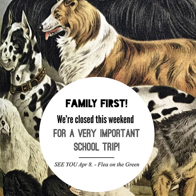 Family first! We'll be closed this weekend for an important school competition. But we'll be back on Saturday, April 8th from 10-2pm for our second FLEA ON THE GREEN w special musical guest @stevekirkguitar. #50bestmainstreet #wardensvillemainstreet @cacaponconnection #fleaonthegreen