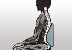 Back support illustration
