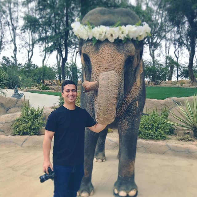 Why can't every shoot have an elephant 🐘