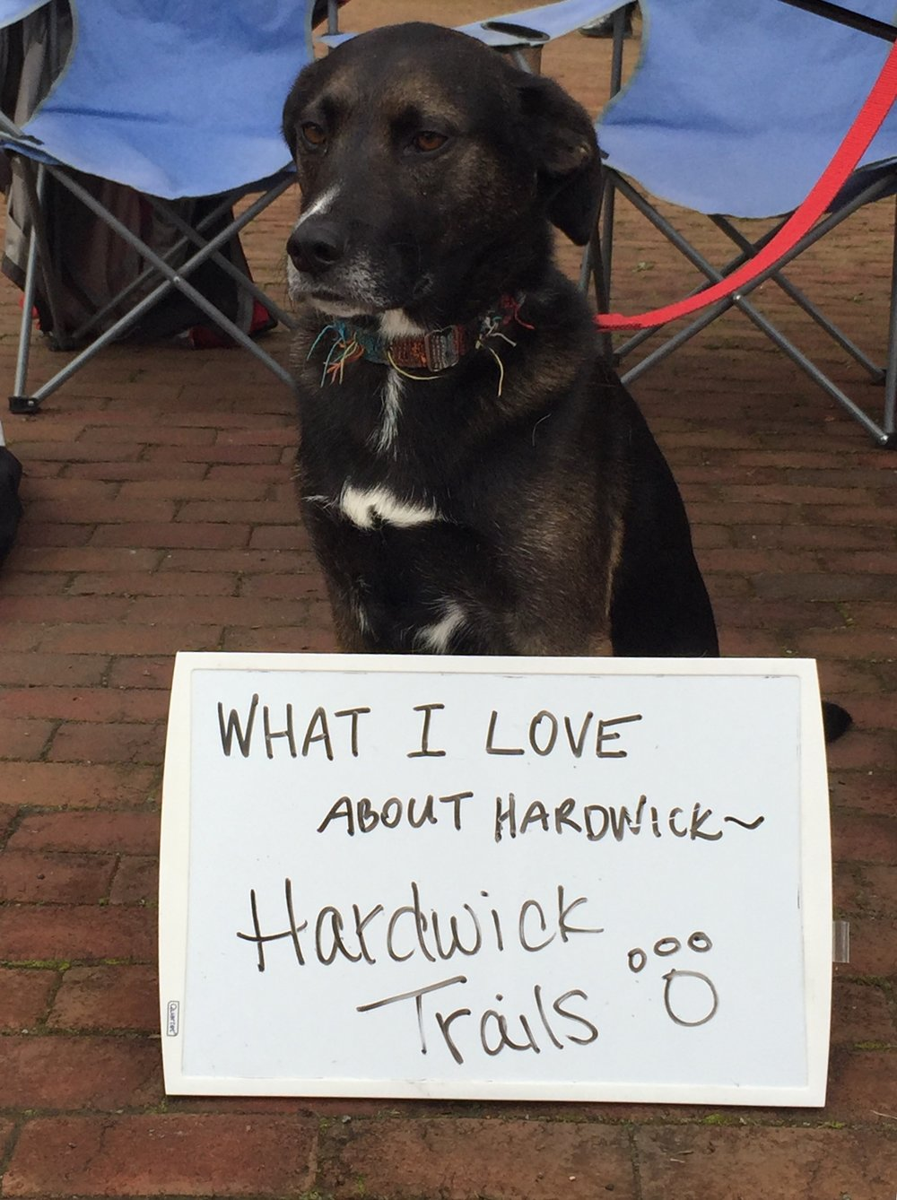 what-i-love-about-hardwick_35390265234_o.jpg