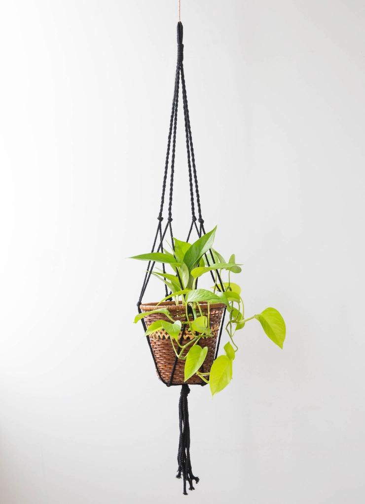 Winton Plant Hanger