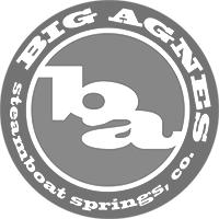 companies-bigagnes.png