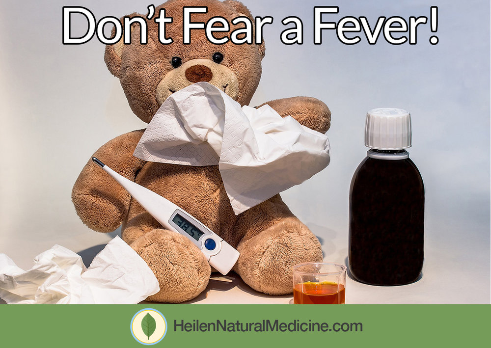 dont-fear-fever.jpg