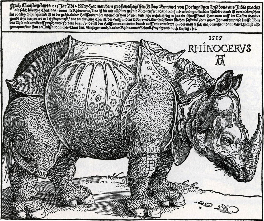 This print of a rhinoceros was created by Albrecht Dürer, the most famous artist of his day. Dürer's celebrity was in part due to his ability to make his work both available and affordable to a mass audience. The new technology of woodcut printing allowed drawings to be mass produced; around 4000 to 5000 copies of the rhino print were probably sold in Dürer's lifetime. Dürer, however, never actually saw a live rhino and based his drawing on a brief sketch and a letter.