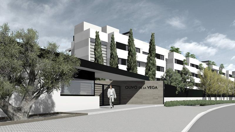 44 Viviendas Residencial El Olivo de la Vega