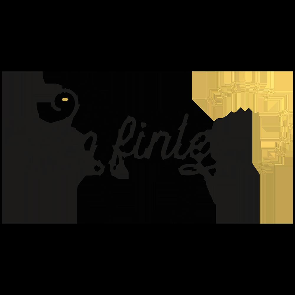 tam-finley-logo