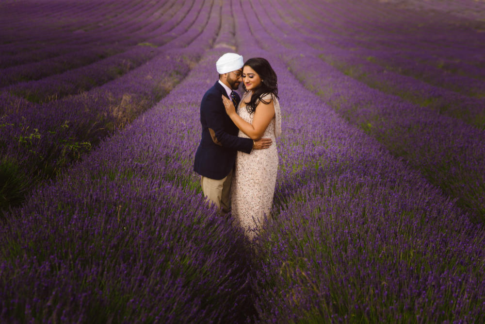 0. Lavender Field Hitchin_1.jpg