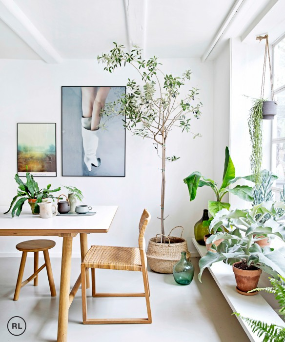 Home of Rikke Graff Juel, photographed by Christina Kayser O