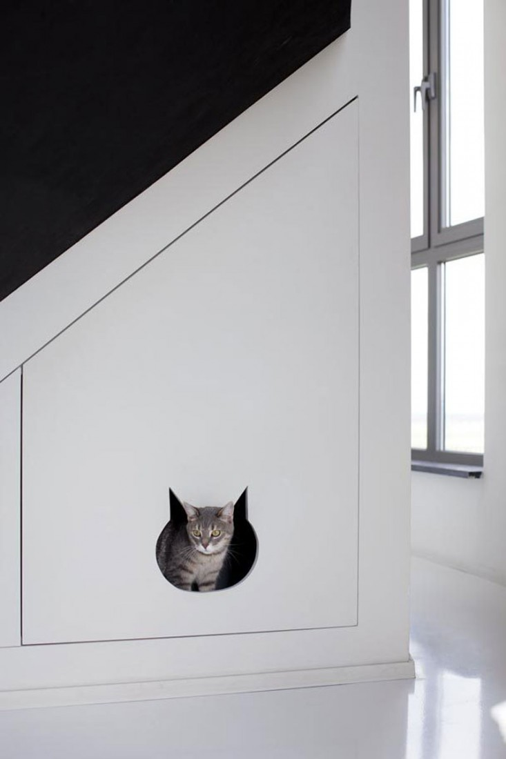 CREATIVE SOLUTIONS TO LIVING WITH A KITTY LITTER BOX — LAURA ...