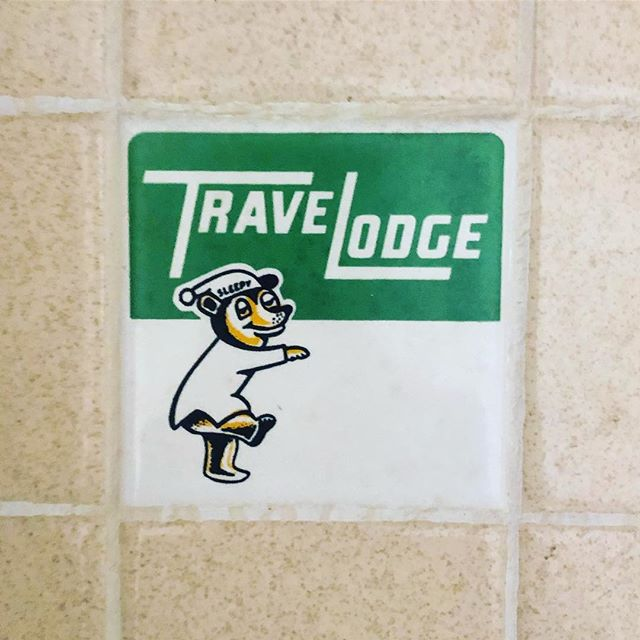 Another bit of the past was uncovered during this week's demolition.  The TraveLodge sleepy bear was depicted on a single tile in most of the original shower surrounds.  #bestresteastorwest @thelongleafhotel #visitraleigh #longlivelongleaf
