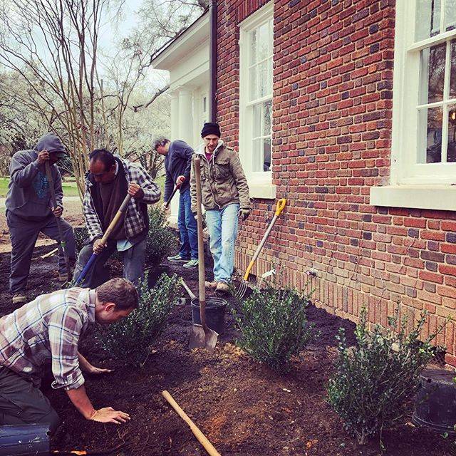 It's planting day at Grimwood House. Thanks to @bandtogether_nc @thenorthgategroup, Drye-McGlamery Engineers, and @sitecollaborative for chipping in. A special shout out to @sitecollaborative for the amazing landscape design! #springplanting #hardwork #mybackhurtsnow