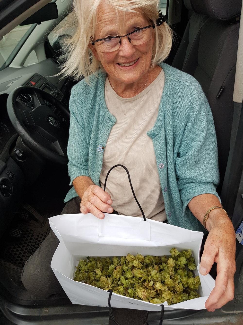 Cecilie Ulrichen har plukket humlekongler fra en plante som gror under grunnmuren på stabburet påRokker gård.