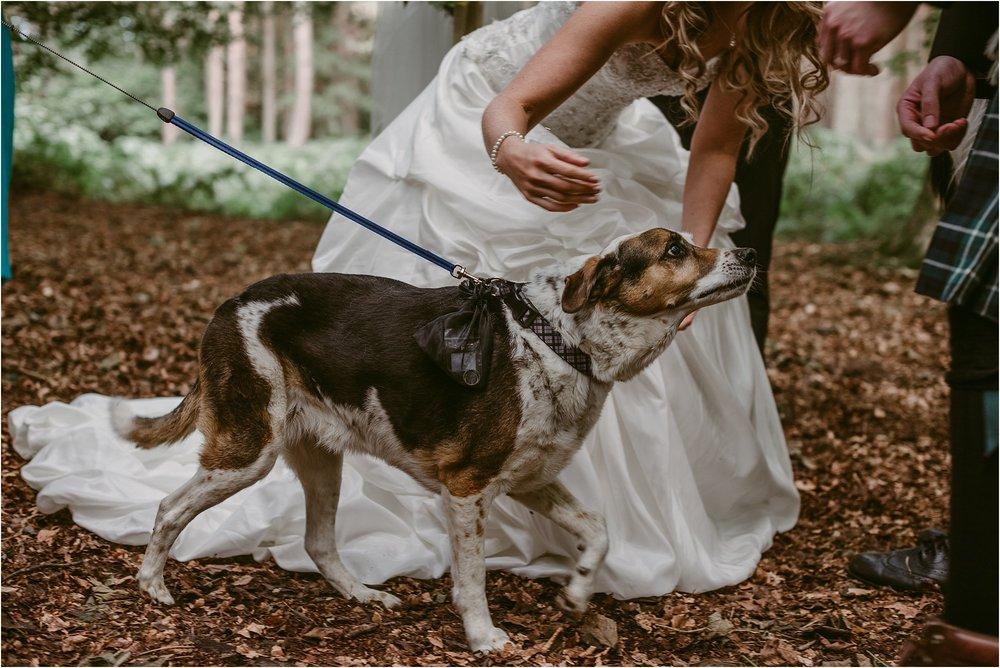 Scottish-outdoor-forest-wedding-edinburgh__0048.jpg