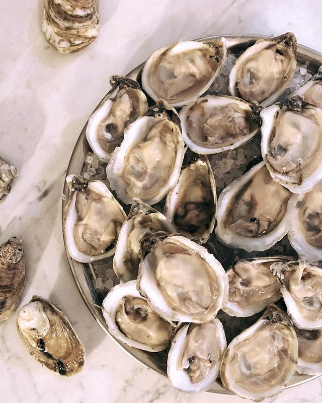 New Years Resolution Idea 💡 Eat better oysters. • • • #tangier #oysters #chesapeakebay #LoveVA #VAoysters #oysterfarming #oysterlover #buyboat #watermen #tastethesea #seafood #VirginiaIsForLovers #VirginiaIsForOysterLovers #VAisForOysterLovers #eastcoastoysters #virginiaoystertrail #VAoystertrail #VirginiaIsBeautiful #tangierislandva #tangierisland #onthehalfshell #onthetable #foodandwine #eater #goodeats #eatwelllivewell #savetangier