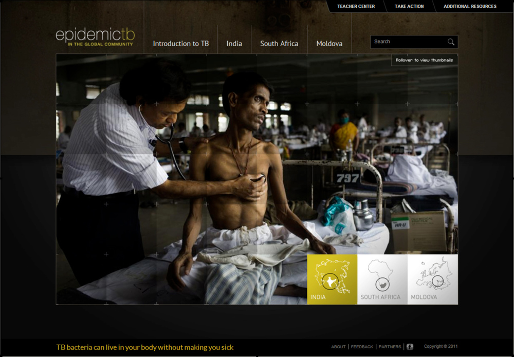 Fighting-Tuberculosis-Website-Screenshot.jpg