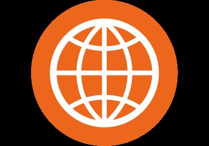 Icon Web narrow.png
