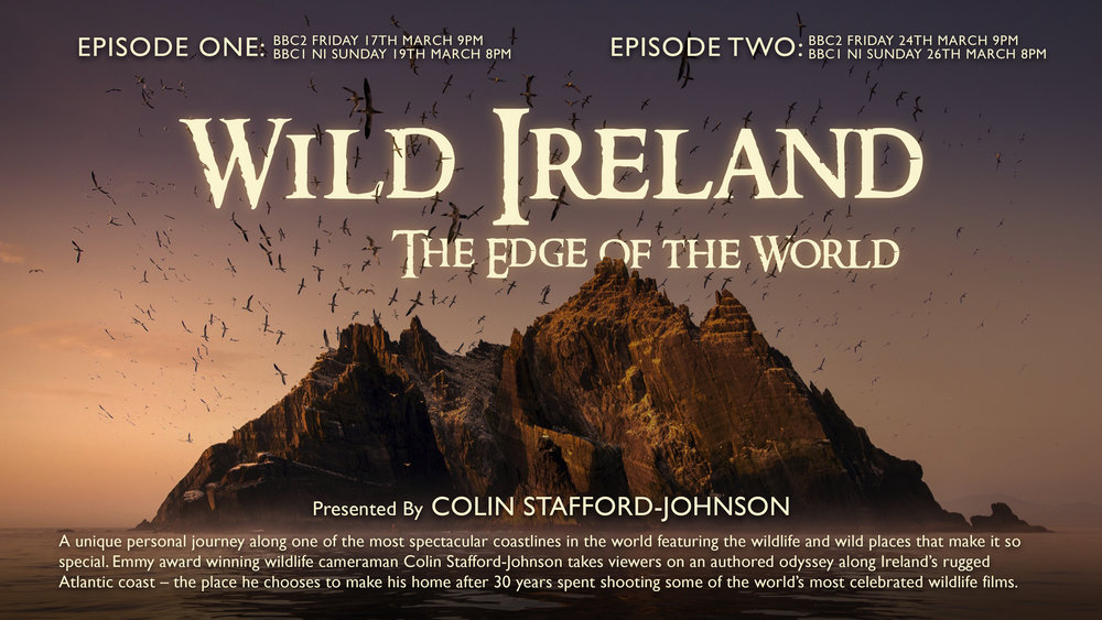Friday 17th and Friday 24th March at 9pm on BBC Two (NI Sunday 19th and Sunday 26th March on BBC One) Colin Stafford-Johnson presents Wild Ireland: The Edge of the World