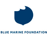 logo-bluemarine.jpg