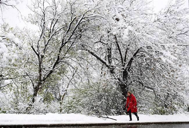 Cold Canadian - Global News.jpg