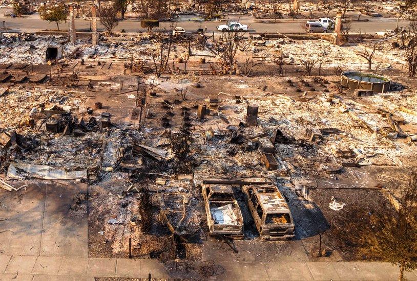 Losing Earth - New York Times.jpg