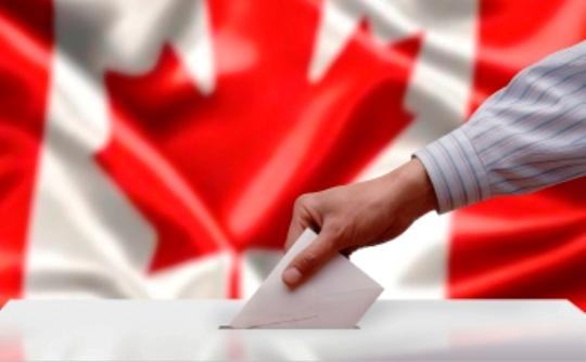 Vote - CARP.jpg