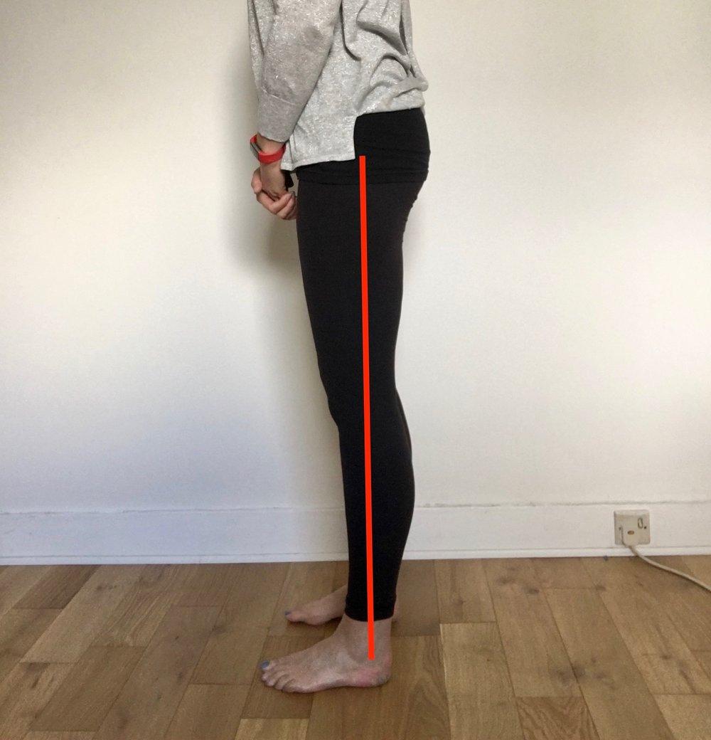 vertical leg.jpg