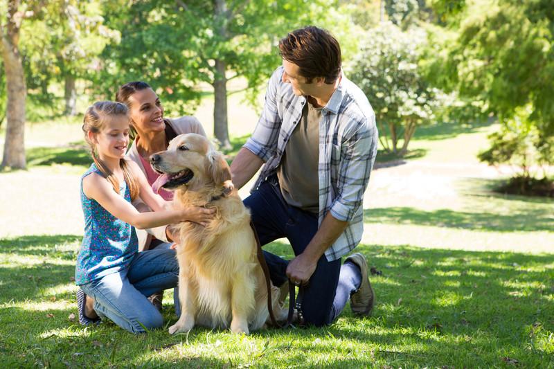1-cani-hearing-dogs-i-migliori-amici-delle-persone-con-problemi-di-udito-udisens-news.jpg