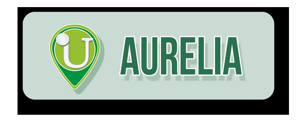 12-Punto-Assistenza-Udisens-Aurelia.png