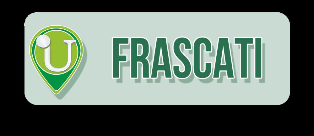 17-Punto-Assistenza-Udisens-frascati.png