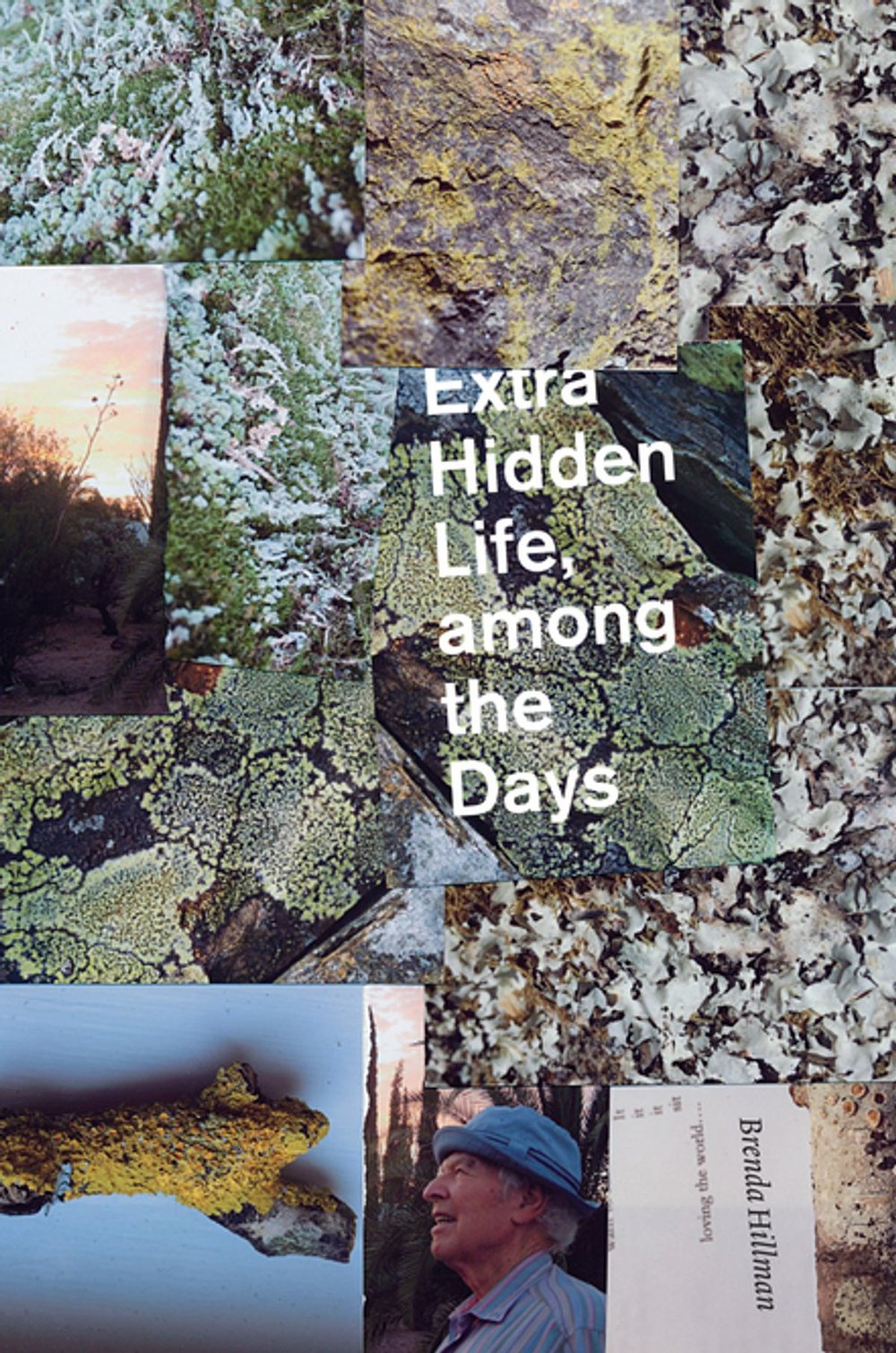 extra-hidden-life-among-the-days.jpg