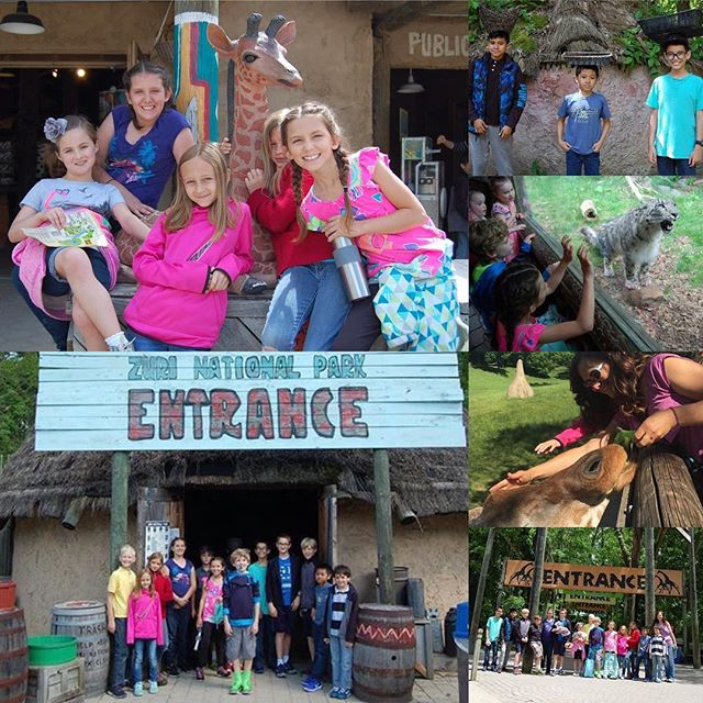 Miss Harley's class field trip to Binder Park Zoo.
