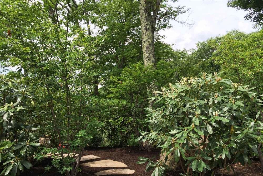 P-garden_3114x.jpg