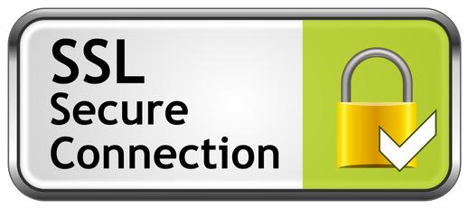 256-bit SSL seal