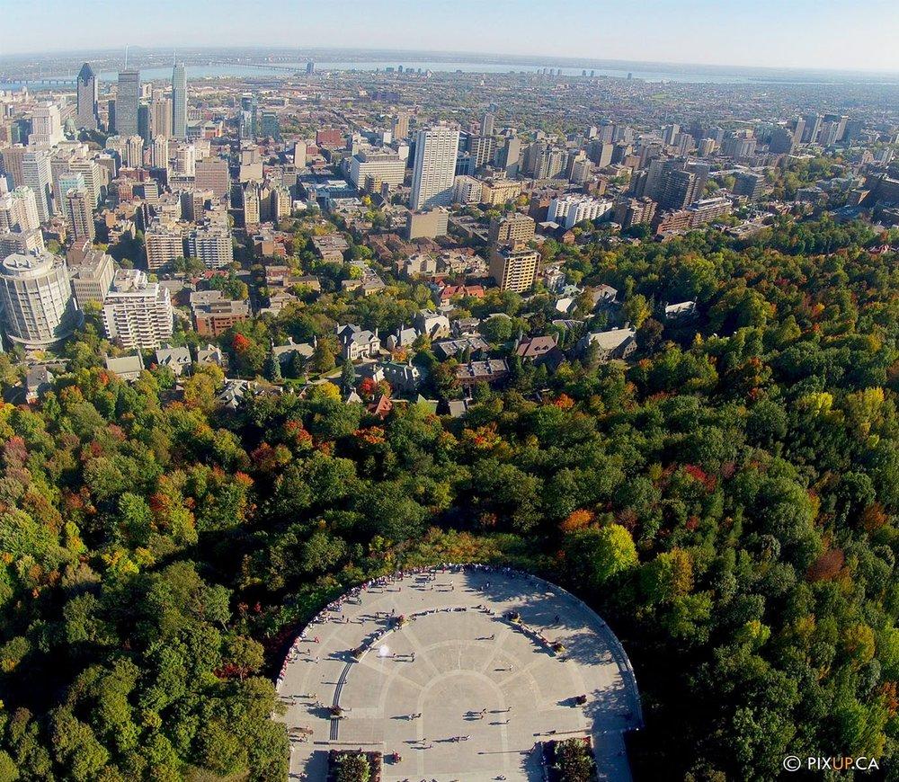 Montréal - Belvédère du Mont-Royal avec vue sur le centre-ville