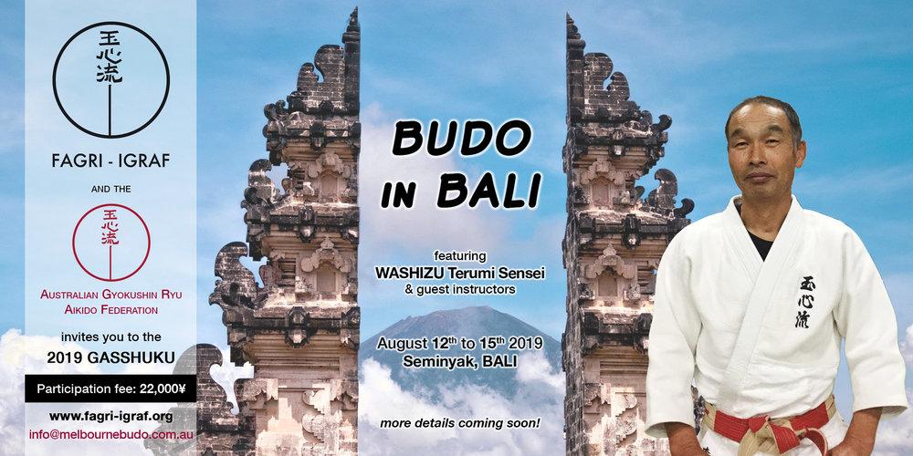 IGRAF_2019-Bali-seminar.jpg