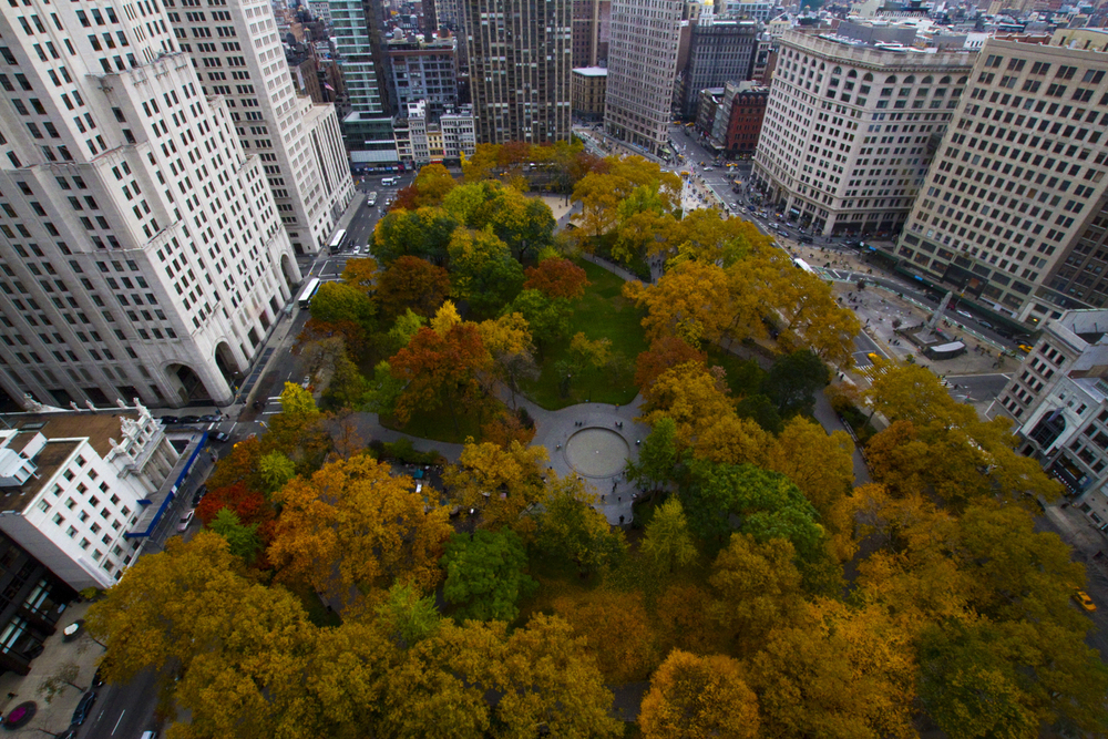 urbanlandscape (14 of 10).jpg