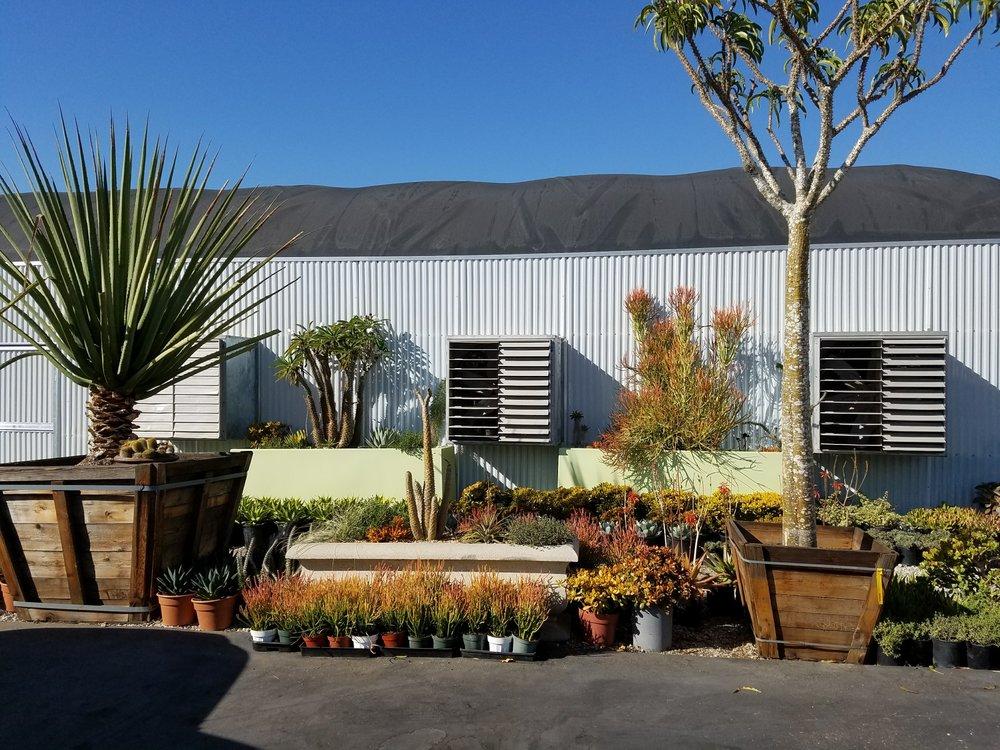 Live Art Plantscapes