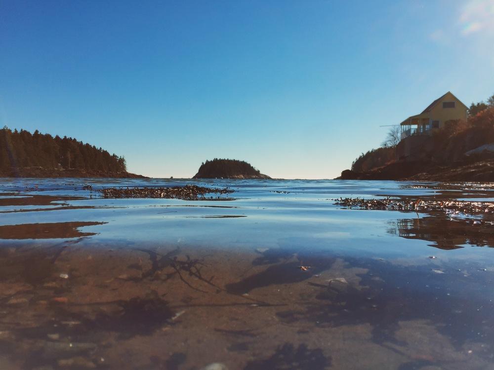 Island Roots, Cliff Kuhn-Lloyd