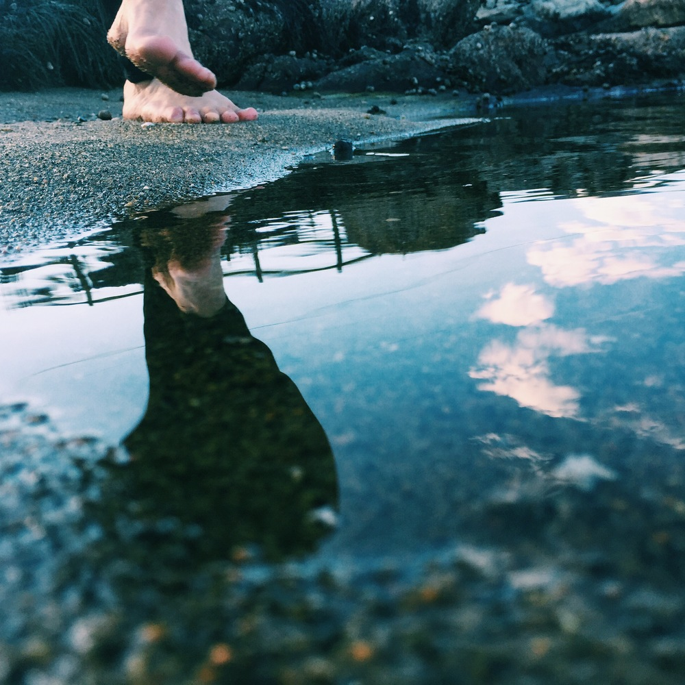 Sea Dance, Cliff Kuhn-Lloyd
