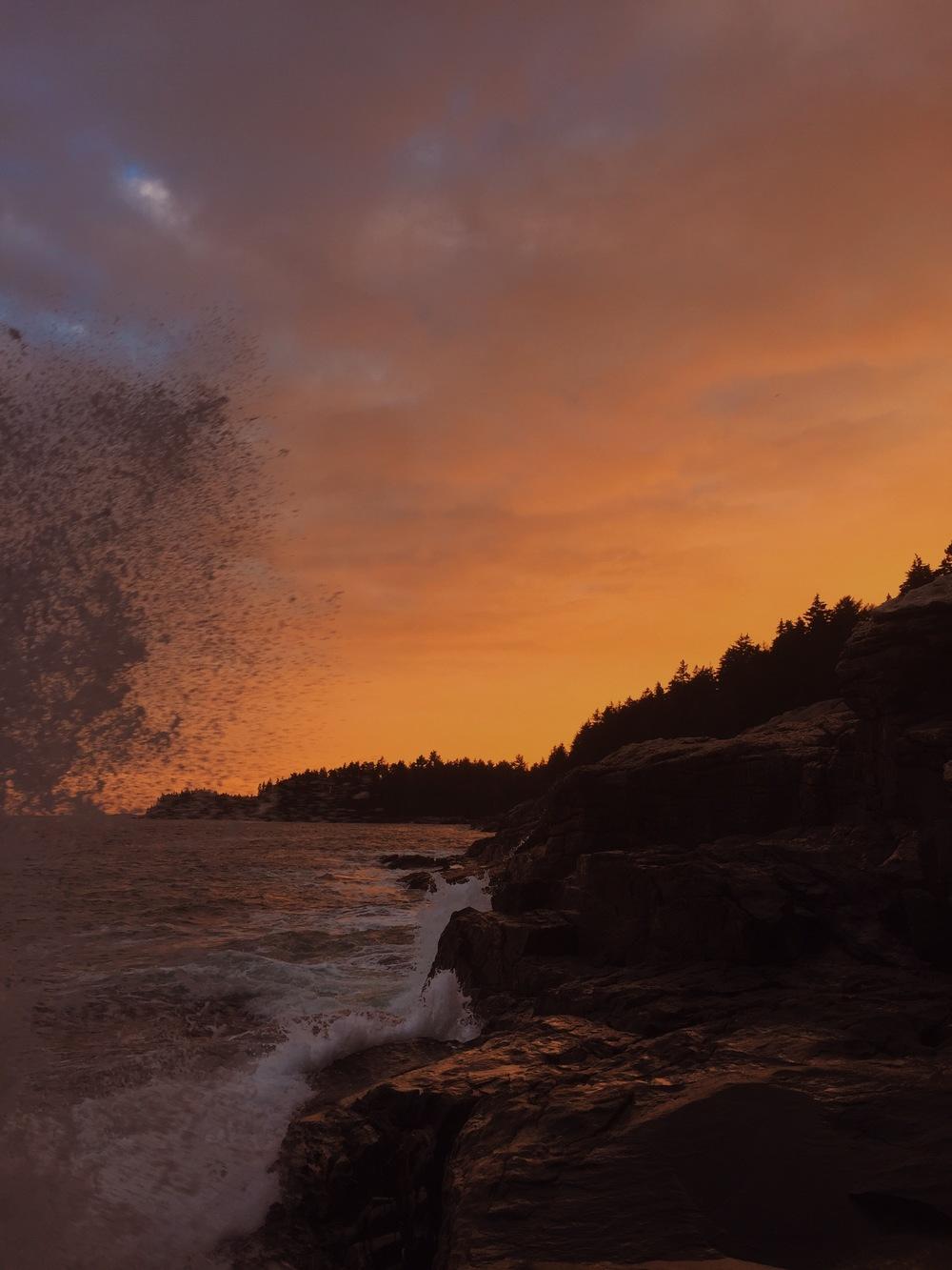 Sunlight Sea Rain, Cliff Kuhn-Lloyd