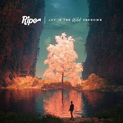 RIPE - April 6th 2018