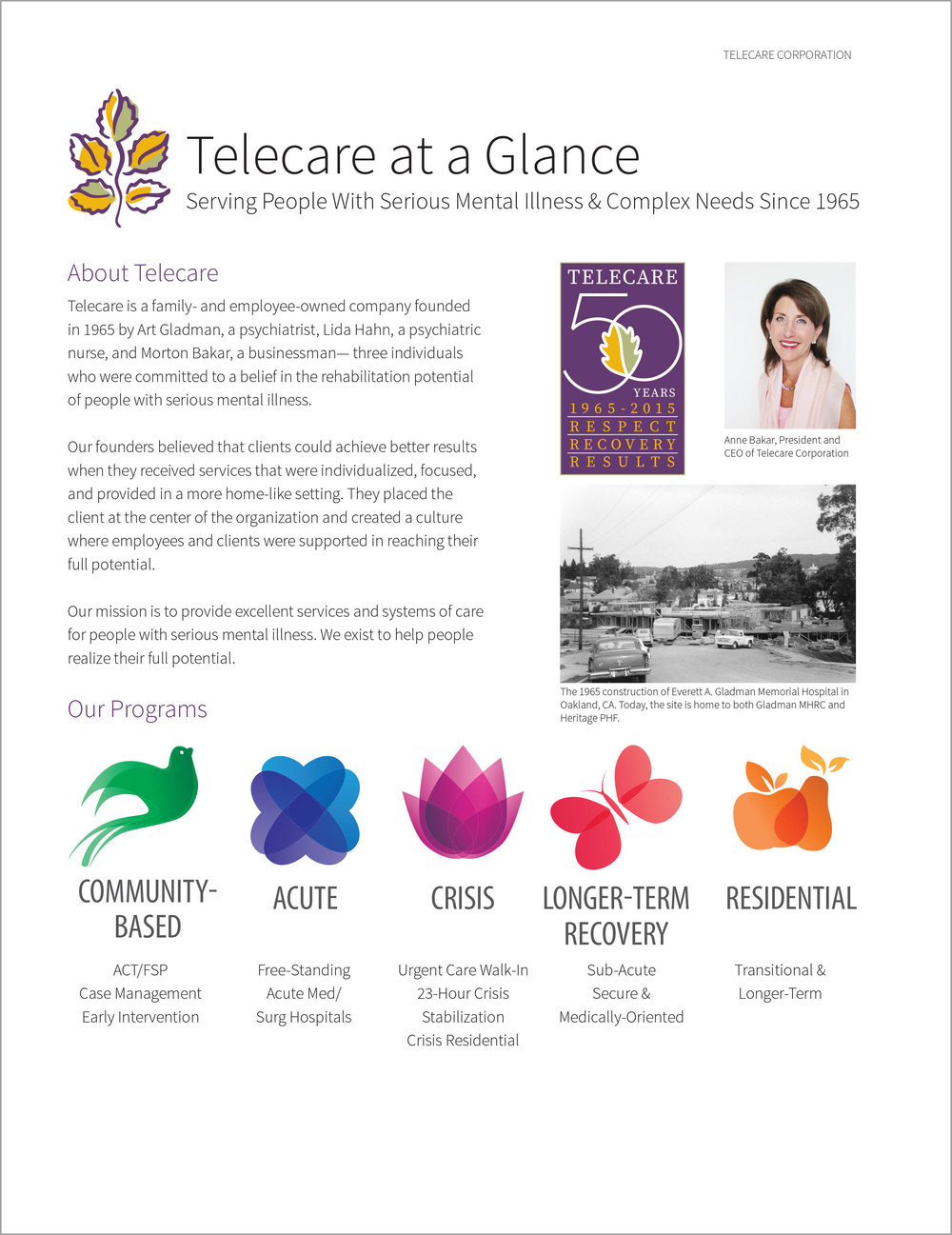 Telecare At a Glance