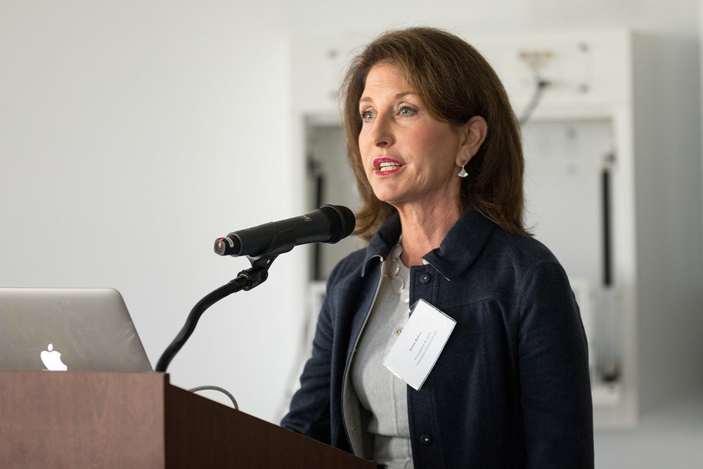 Anne Bakar, Telecare's President and CEO, presenting at the California Future Health Workforce Commission.  Photo by the Steinberg Institute .