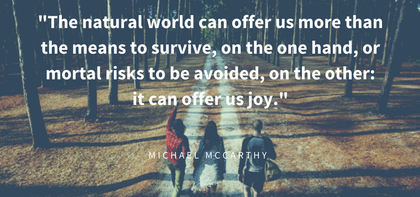 Telecare RCCS_Healing Environments_Michael McCarthy Quote.png