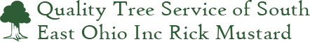 Quality Tree Service.jpg