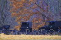 Amish-Buggies-In-the-Rain_art - Glenda Borchelt.jpg