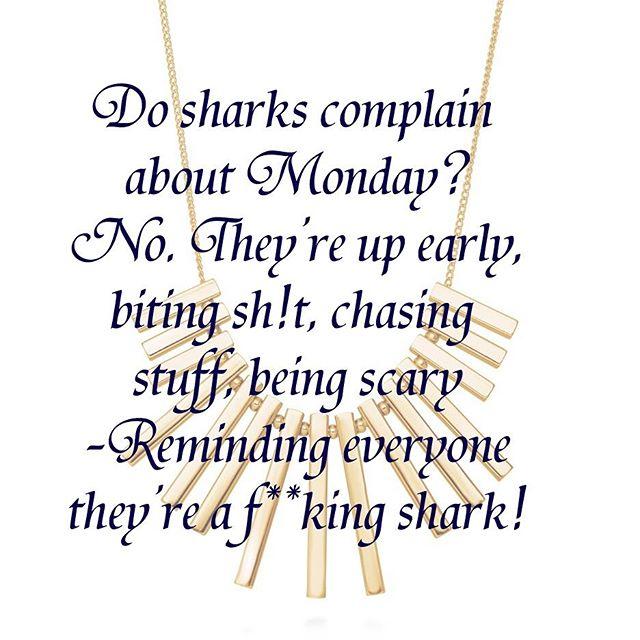 #motivationmonday #beedgy  #beashark #nocomplainingzone #mondayvibes #positivevibes #goandgetit #remindpeoplewhoyouare #ambition #ambitiouswomen #happymonday #coffeetime #shark #beingedgy