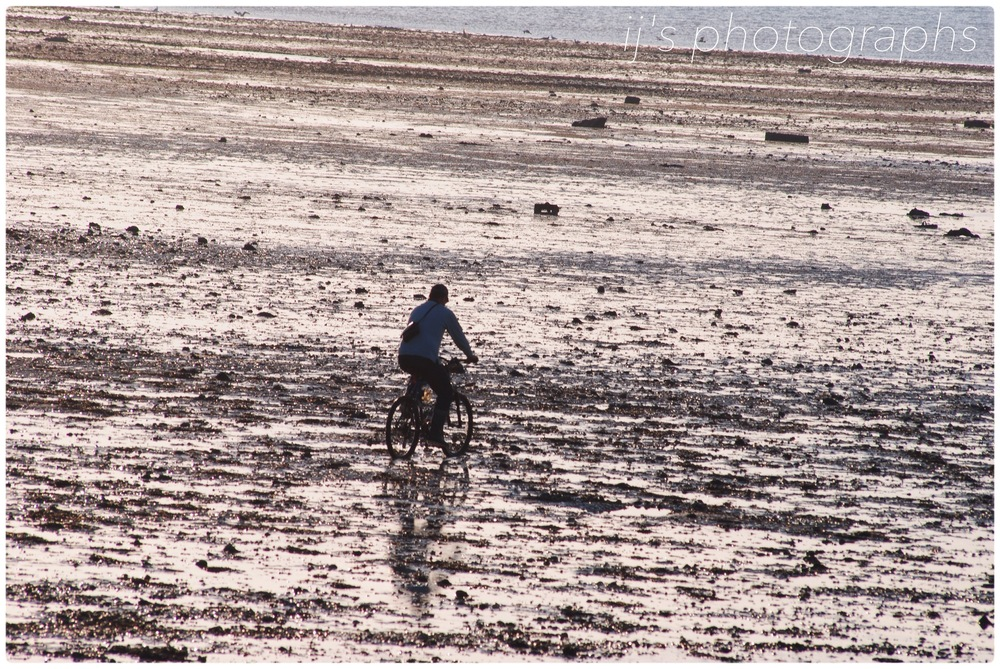 cycling to the oyster beds in whitstable (2013)
