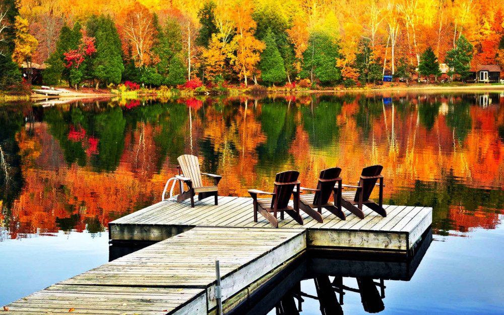 nature-autumn-lake-trees-reflection-wooden-chair-peace-image1.jpg