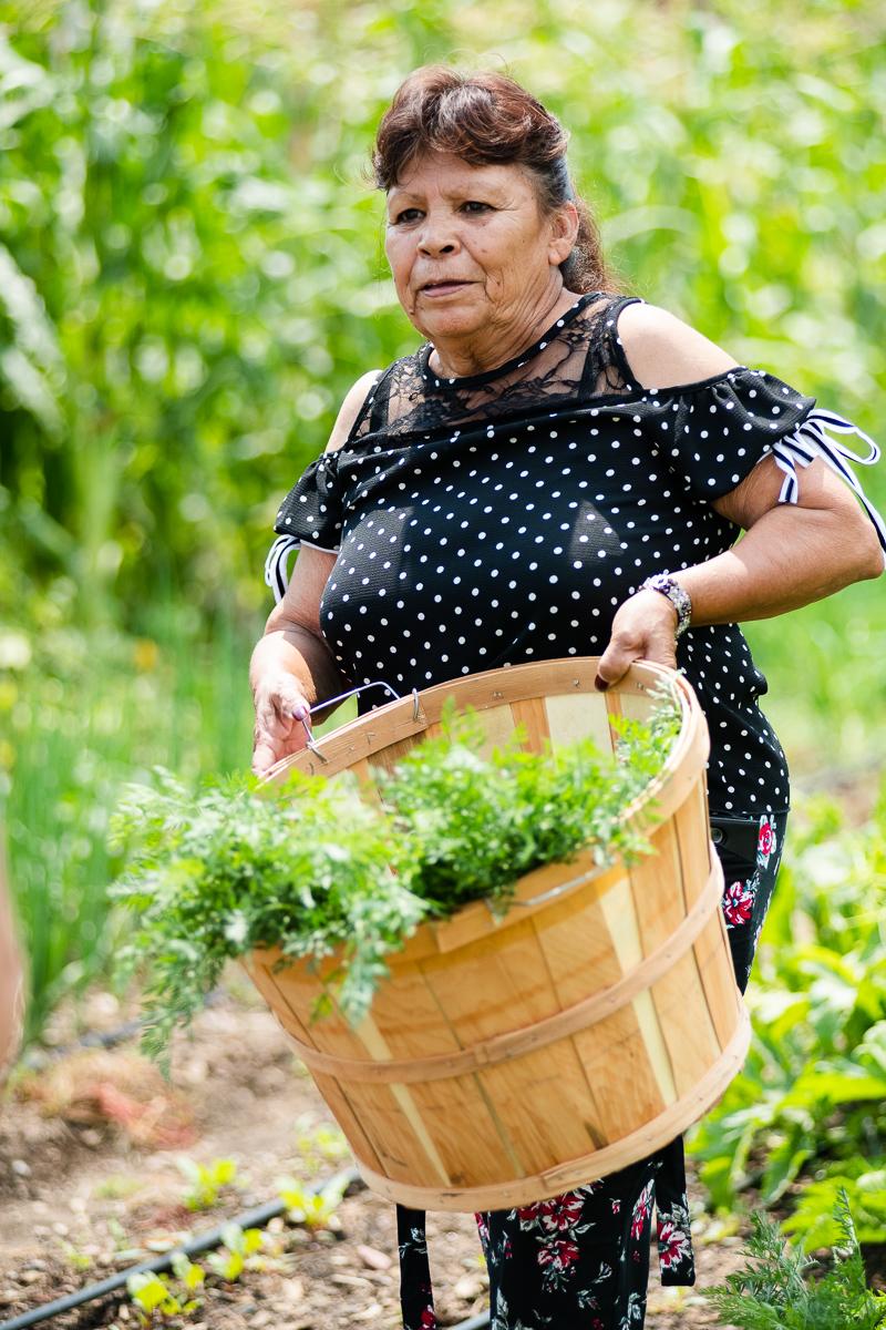 Promotoras gardening